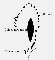 Tegning fra Chanchal de Mahoma, Spanien, som viser Månens faser fra nymåne til nymåne. Vurderes at være fra omkring år 7000 f.v.t.