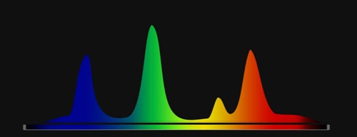 Lysstofrørs spektrum. Det fremgår, at lysstofrøret ikke udsender så meget lys i den røde og infrarøde del af spektret.